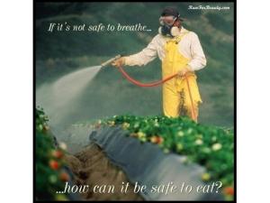 Rotator-Not_Safe_to_Eat