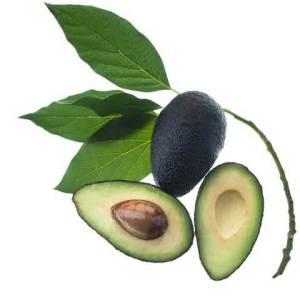 avocado 10