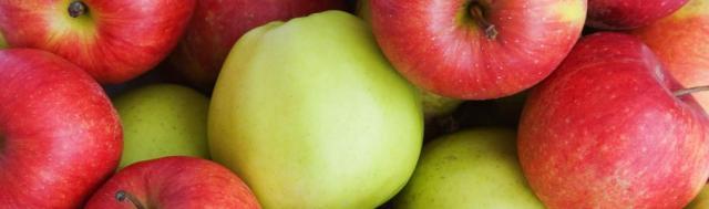 Apples Banner Slide 1